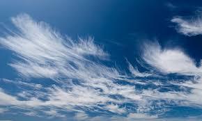 Sirüs Bulut Çeşiti