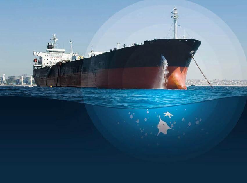 Ballast Water Management Anlaşması Nedir?